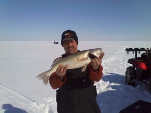 Walleye on Saginaw Bay