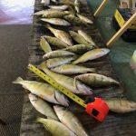 SAGINAW BAY Fishing Report 10/13/2017